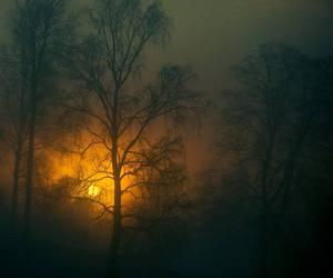 amazing, dark, and dreams image