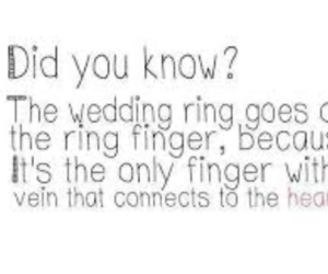fact, marriage, and heart image
