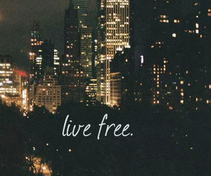 free, city, and live image