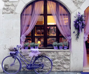 beautiful, violet, and design image