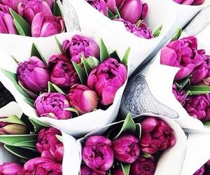 beautiful, purple, and flowers image