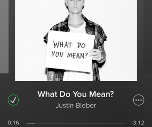 whatdoyoumean and bieber is back image