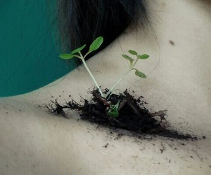 plants, grunge, and nature image