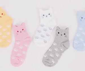 socks, cute, and cat image