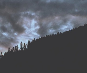 nature, sky, and trees image