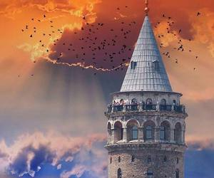 birds, love, and castle image
