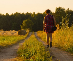 field, path, and summer image