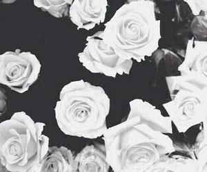 beautiful, black and white, and flowers image