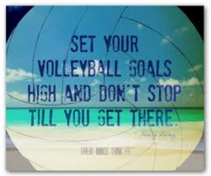 volleyball image