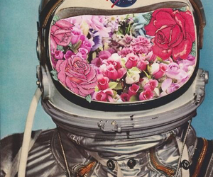 flowers, space, and photography image