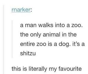 animals, funny, and text posts image