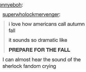 americans, autumn, and fall image