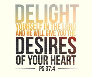 god, bible, and delight image