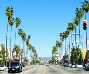 header, twitter, and california image