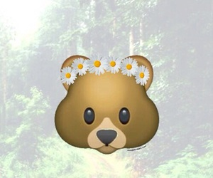 bear, emoji, and wallpaper image