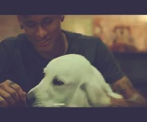 dog, njr, and cute image