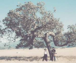 meadow, music, and nature image