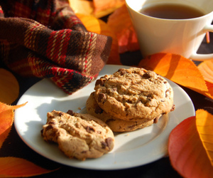 autumn, fall, and Cookies image