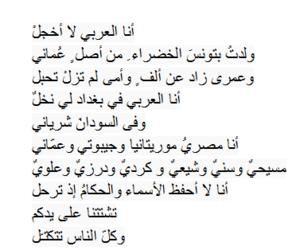 مصر, لبنان, and شيعي image