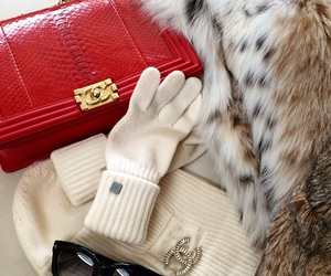 accessories, fashion, and luxe image