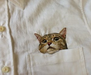 cat, shirt, and vintage image