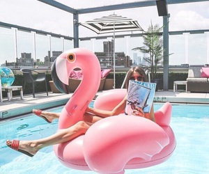 summer, pool, and pink image