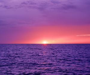 pink, purple, and sunrise image