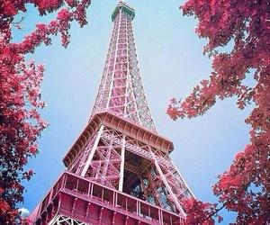 paris, pink, and Dream image