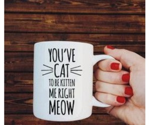 cat, diy, and meow image
