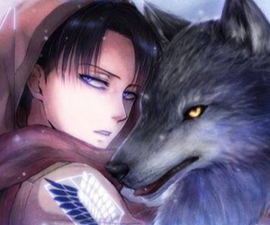 wolf, anime, and levi image