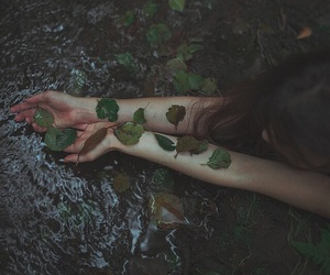 leaves, nature, and grunge image