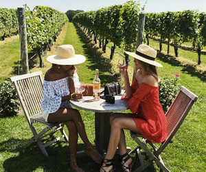 summer and wine image