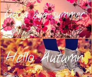 alive, autumn, and fall image