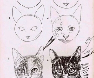 cat, drawing, and kitty image