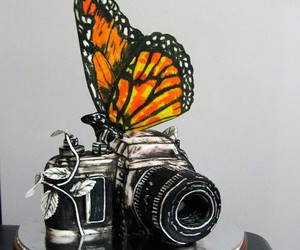 butterfly, cake, and camera image