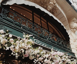 flowers, architecture, and luxury image