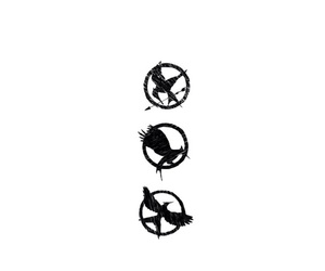 mockingjay, book, and the hunger games image