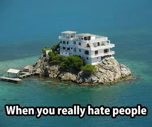 funny, hate, and people image