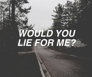 grunge, quote, and lies image
