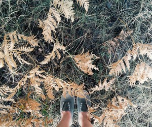 forest, shoes, and lypovaolya image