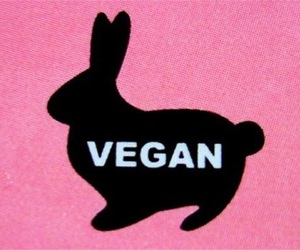 compassion, misery, and vegetarian image