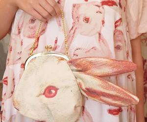 rabbit, fashion, and bunny image