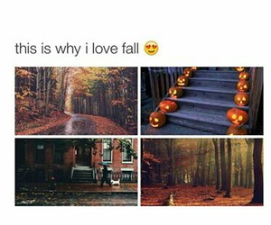 fall and Halloween image