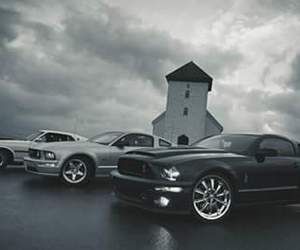 cars, ford, and gt image