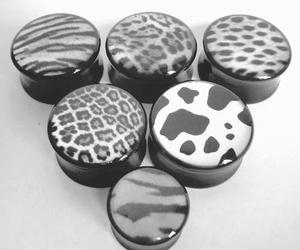Plugs, zebra, and animal print image