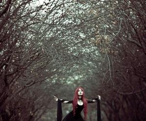 dark, florest, and Darkness image