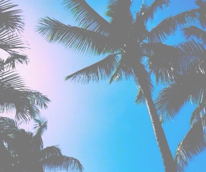bright, summer, and tropical image