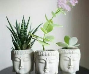 plants, flowers, and Buddha image