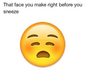funny, emoji, and lol image