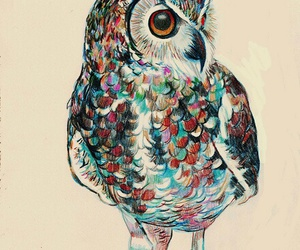 art, beautiful, and owl image